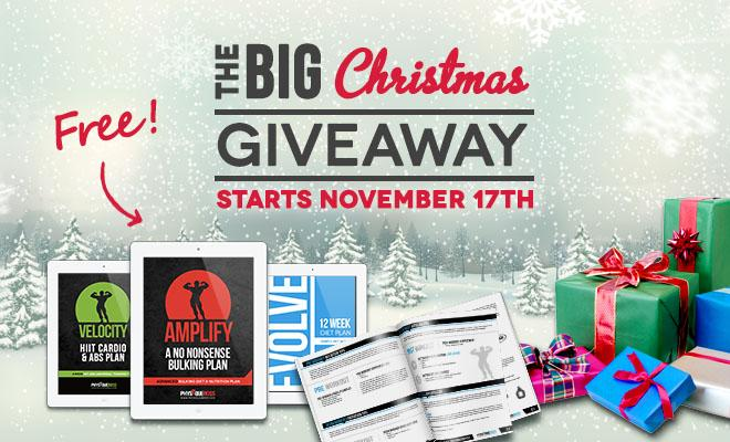 The BIG Giveaway - ENDED!